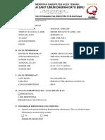Form Skk Hasnah Pk II