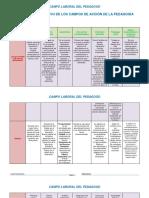 campo de accion de la pedagogia.pdf