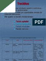 3-tecido_epitelial