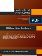 Ciclo de Vida Del Contribuyente_Clase 1 (2015-1)