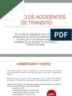 Seguro de Accidentes de Transito