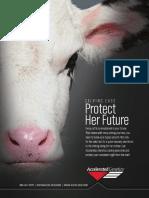 80603 201504 Dairy Calving Ease Flyer Final Lr