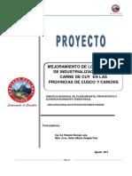 proyecto cuyesaa