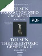 2002 Tolmin-razprave
