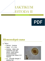 PRAKTIKUM CESTODA II.ppt