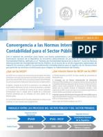 Boletin_NICSP_1.pdf