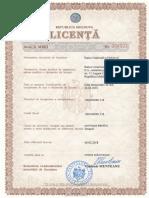 licenta is tipurile de activitati.pdf
