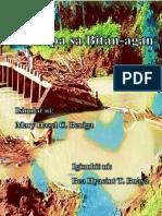 Cover Page Bi