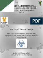 (20171010051725)Aula 1 - Noções Sobre Os Riscos Físicos, Químicos e Biológicos Em Saúde.