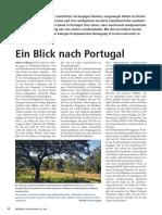 bc615 portugal