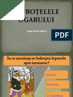 Joc-Ciubotele (1).ppsx