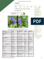 Quelques Plantes Créoles Et Leurs Noms en Latin