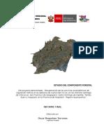 1 - Descripcion de actividades - huaytara centro.doc