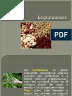 8. Leguminosas