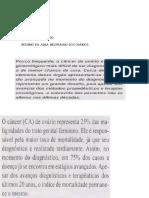 Caderneta Pessoa Idosa 2017 Capa Miolo