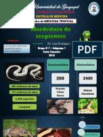 MT- Mordedura de Serpientes