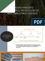 biomasa presentacion