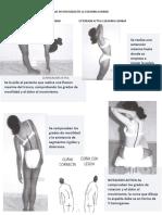 PRUEBAS DE MOVILIDAD DE LA COLUMNA LUMBAR.docx