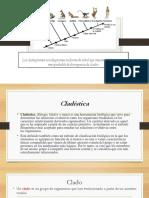 cladogramas-final.pptx