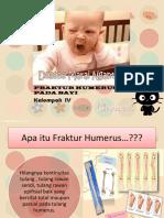 Ppt Humerus