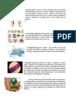 8. Guia de Estudios Para Las Evaluaciones 2018 Guatemala