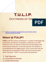 TULIP Doctrines of Grace