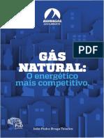LIVRO Gas Natural o Energetico Mais Competitivo