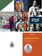 Santidad Papa Francisco Si