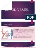 CARDIOVASCULAR SYSTEM (The Blood Vessels).pptx