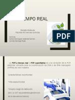 PCR Tiempo Real