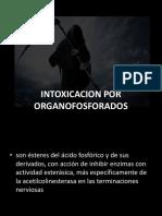 organofosforados.pptx