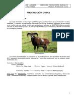 Guía de ovinos 2016.pdf