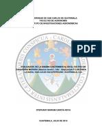 Evaluación de La Dinámica Nutrimental en El Cultivo de Zanahoria Morada