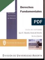 Derechos Fundamentales Area VI-Filosofia y Teoria Del Derecho