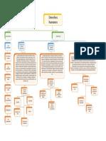 Mapa Conceptual Ddhh