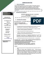 CV-Alexander Boñon Fernandez