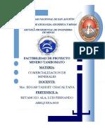 Estudio de Factibilidad Del Proyecto Minero de Oro y Plata