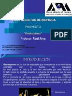 ContrerasL.ppt