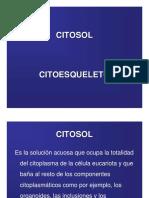 Citosol_Citoesqueleto