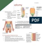 gastro anatomy.docx