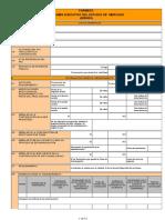 Resumen Ejecutivo PoquePunos 20170821 172742 703