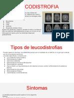 leucodistrofia  (1)
