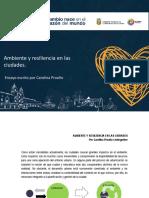 Ambientey Resilienciaen en Las Ciudades_ensayo