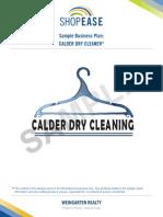 SampleBusPlan-DryCleaner.pdf
