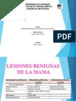 Patologia Benigna y Maligna de Mama