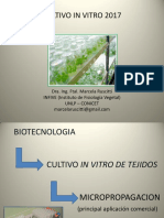 Cultivo in Vitro 2018