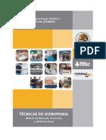 Modelo de mercado Hidroponia