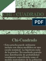 Chi Cuadrado (1)