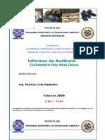Informe Auditoria Ambiental Curtiembre Doc