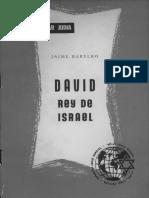 David rey de Israel.pdf